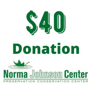 40 dollar donation